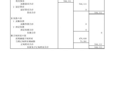 平成30年度貸借対照表(公告)
