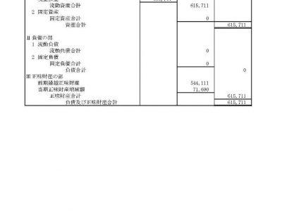 【公告】令和1年度(令和2年6月30日現在)貸借対照表